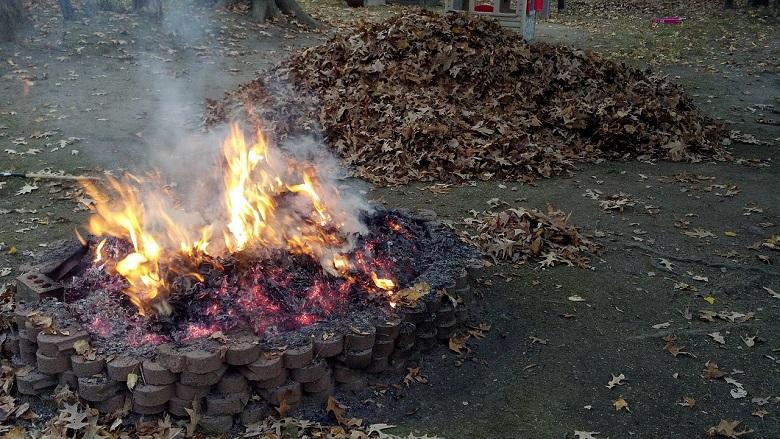 backyard fire pit laws ss