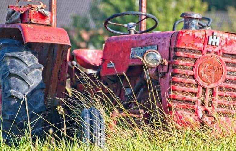 Killing Weeds with Diesel Fuel- What to Do &Not to_1_1