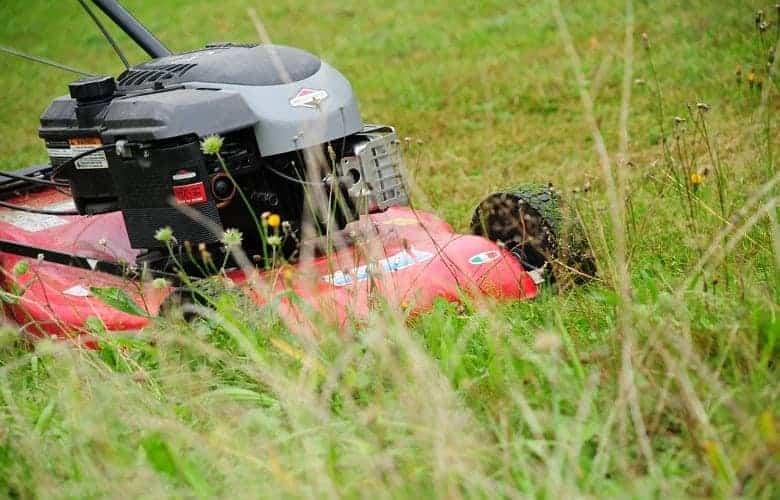 Lawn Mower Valve Adjustment Symptoms_1_1