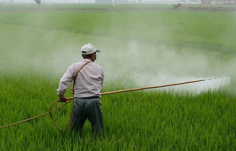 Nutgrass Killer Selective Herbicide